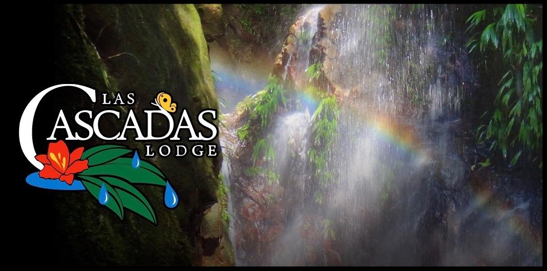 rainbow hunting Upper Falls @lascascadaslodge
