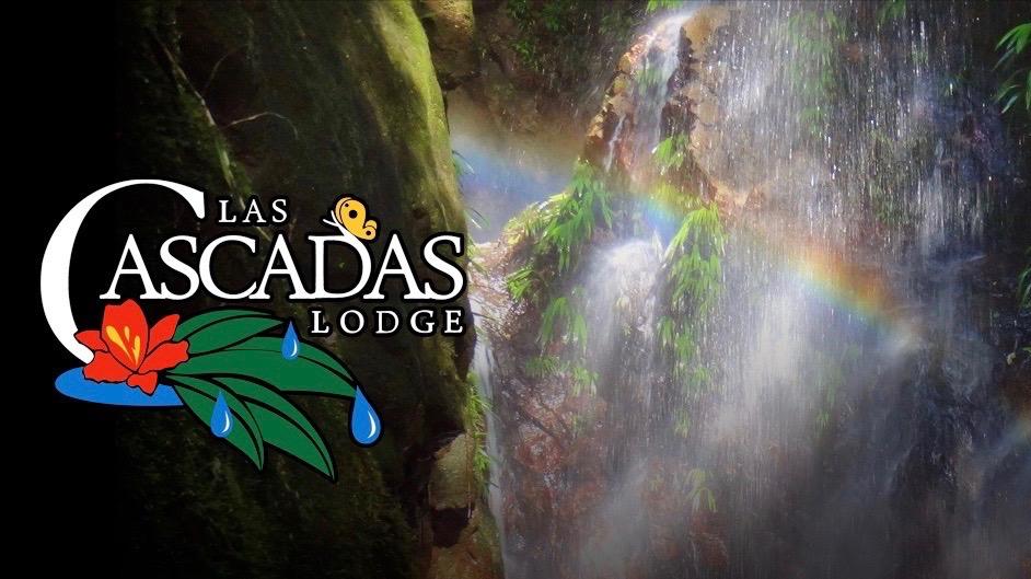 cascadas-travelpro-flyer2 2.jpg