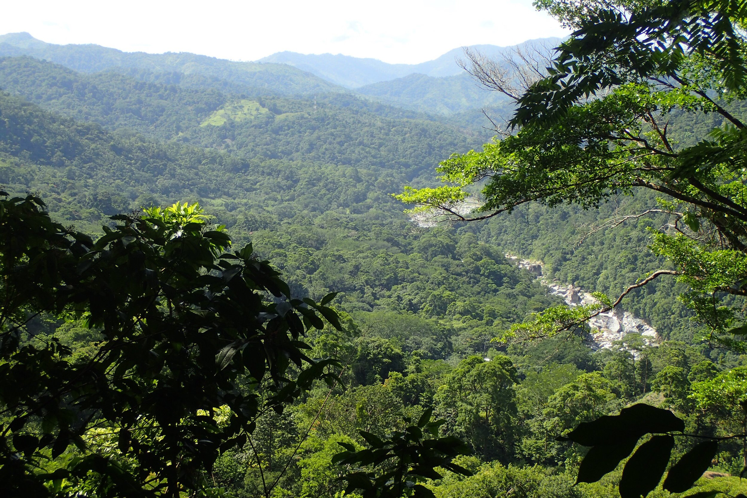 The Valley of the Cangrejal River provides lots of adventure tour options while you vacation with us!