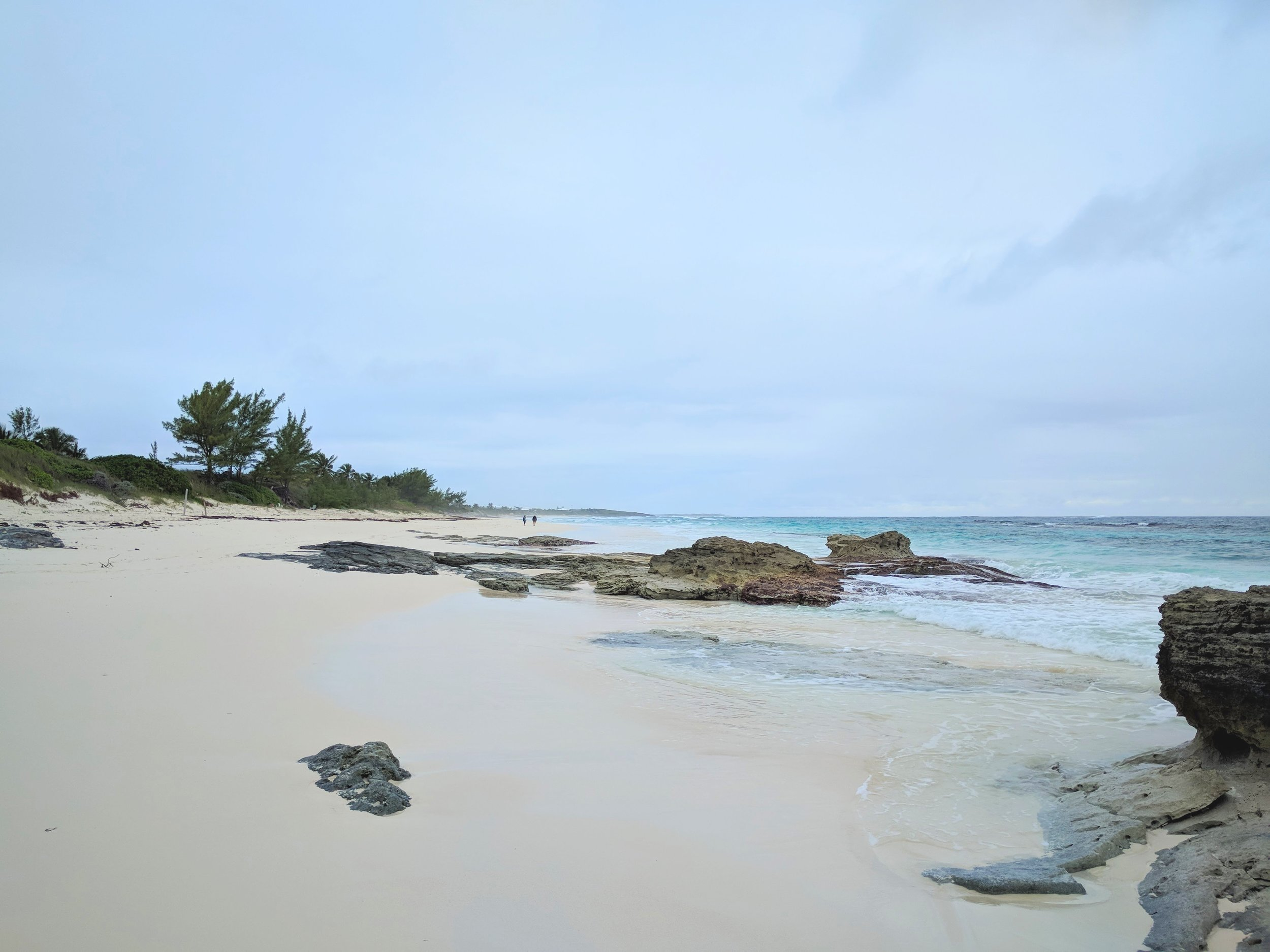 Crisp cold walk on the beach.