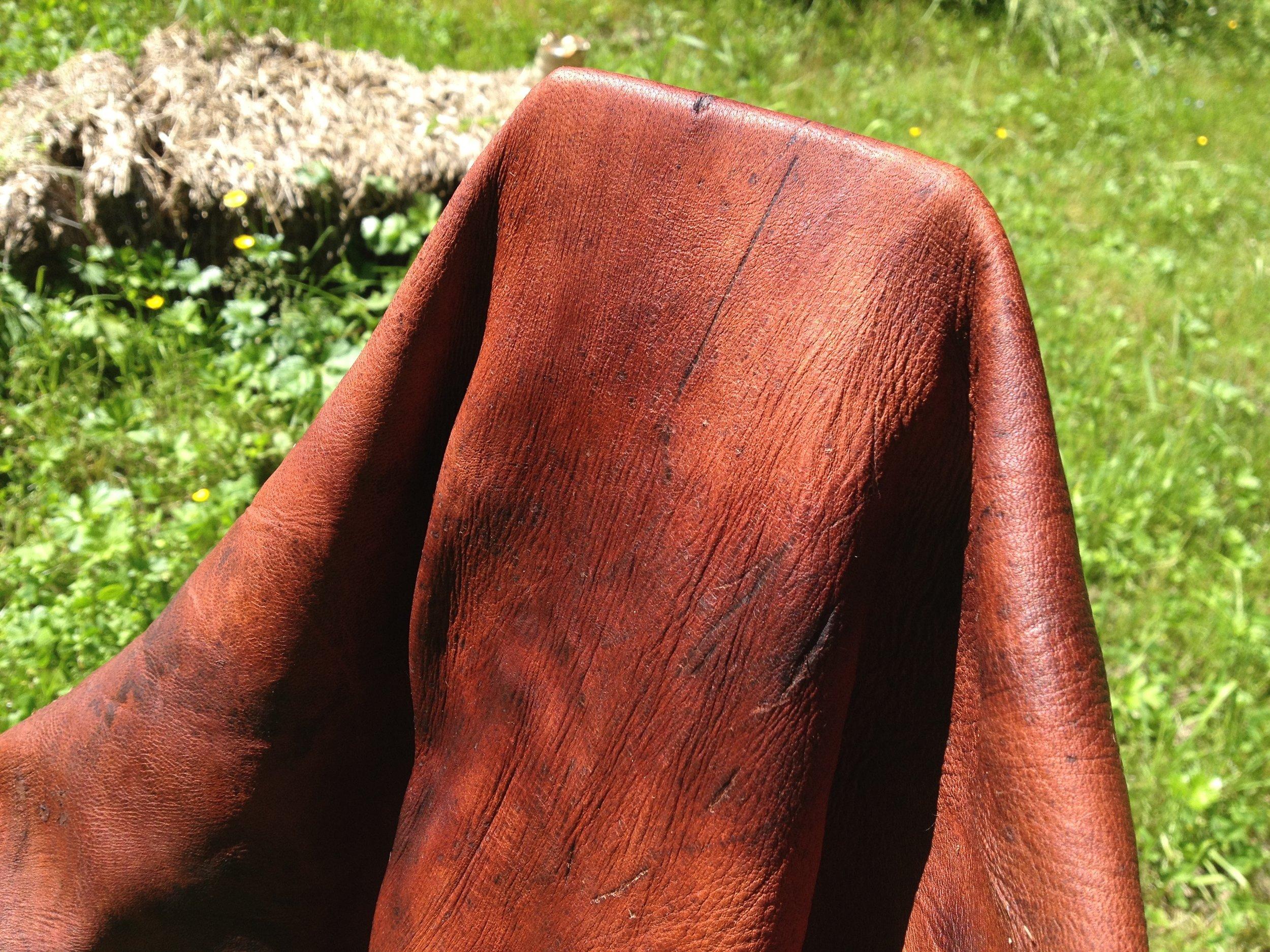 Bark-Tanned Deer Hide