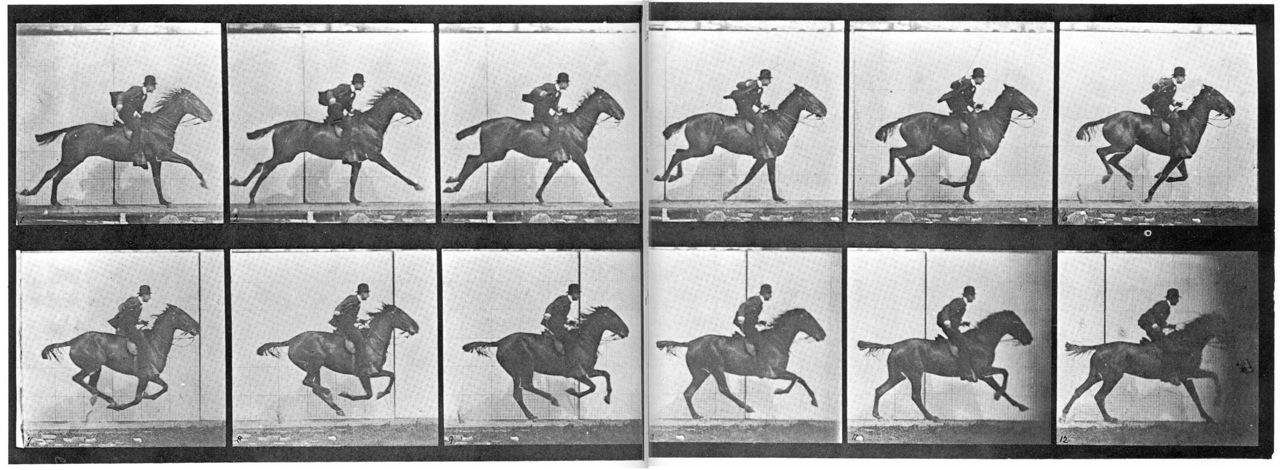 Eadweard Muybridge, Animal Locomotion, Plate 624 (1887)