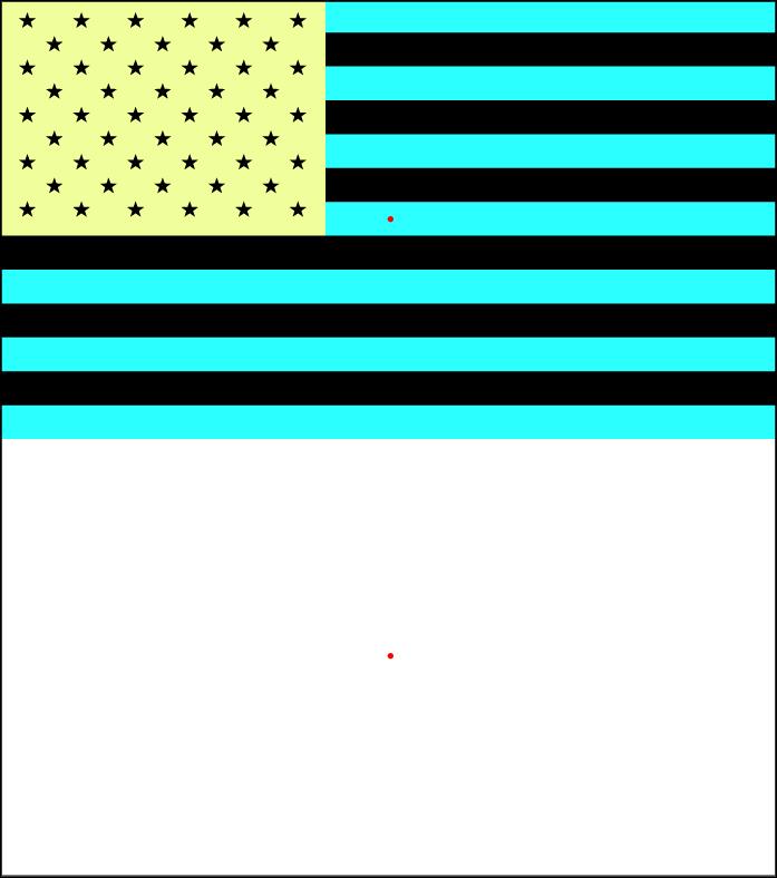 01 VANTAGE TEES Afterimage USFlag.jpg