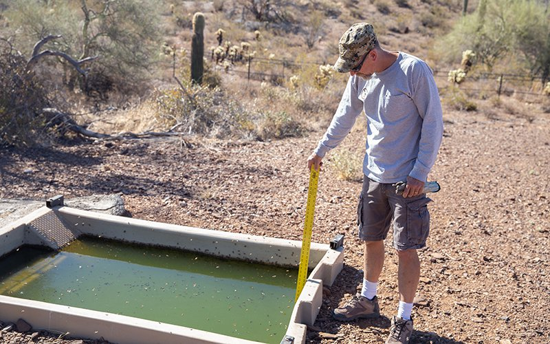 Jed Nitso uses a yardstick to measure a catchment's water level. Most of Arizona's catchments depend on patrolling Arizona Game & Fish rangers and wildlife managers to monitor them. (Photo by Nick Serpa/Cronkite News)