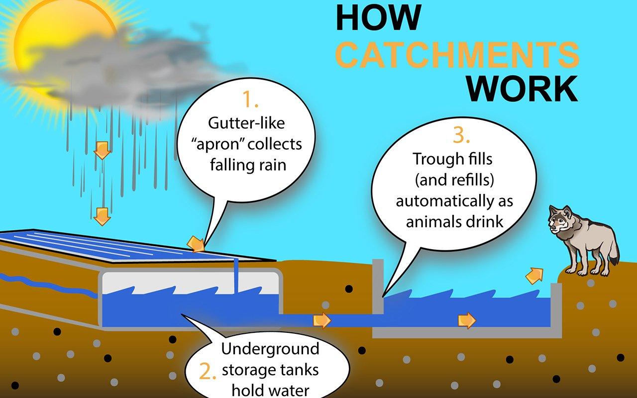 Catchment-Infographic-V1-1280.jpg