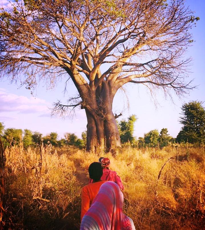 Real Malawi2.jpg