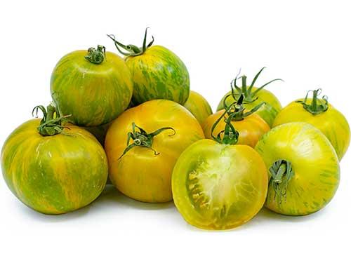 Seedling12-green-zebra-tomato.jpg