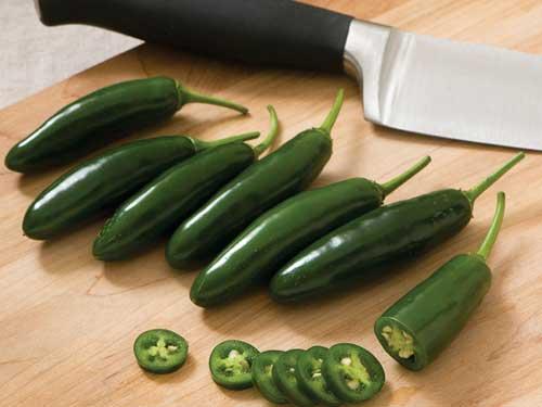 Seedling14-hot-rod-chili.jpg