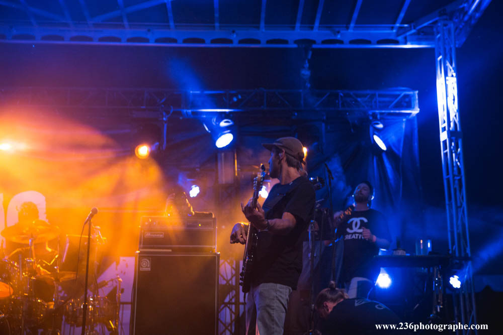 Iration_CityofTrees_BenGriewing2017-0935.jpg