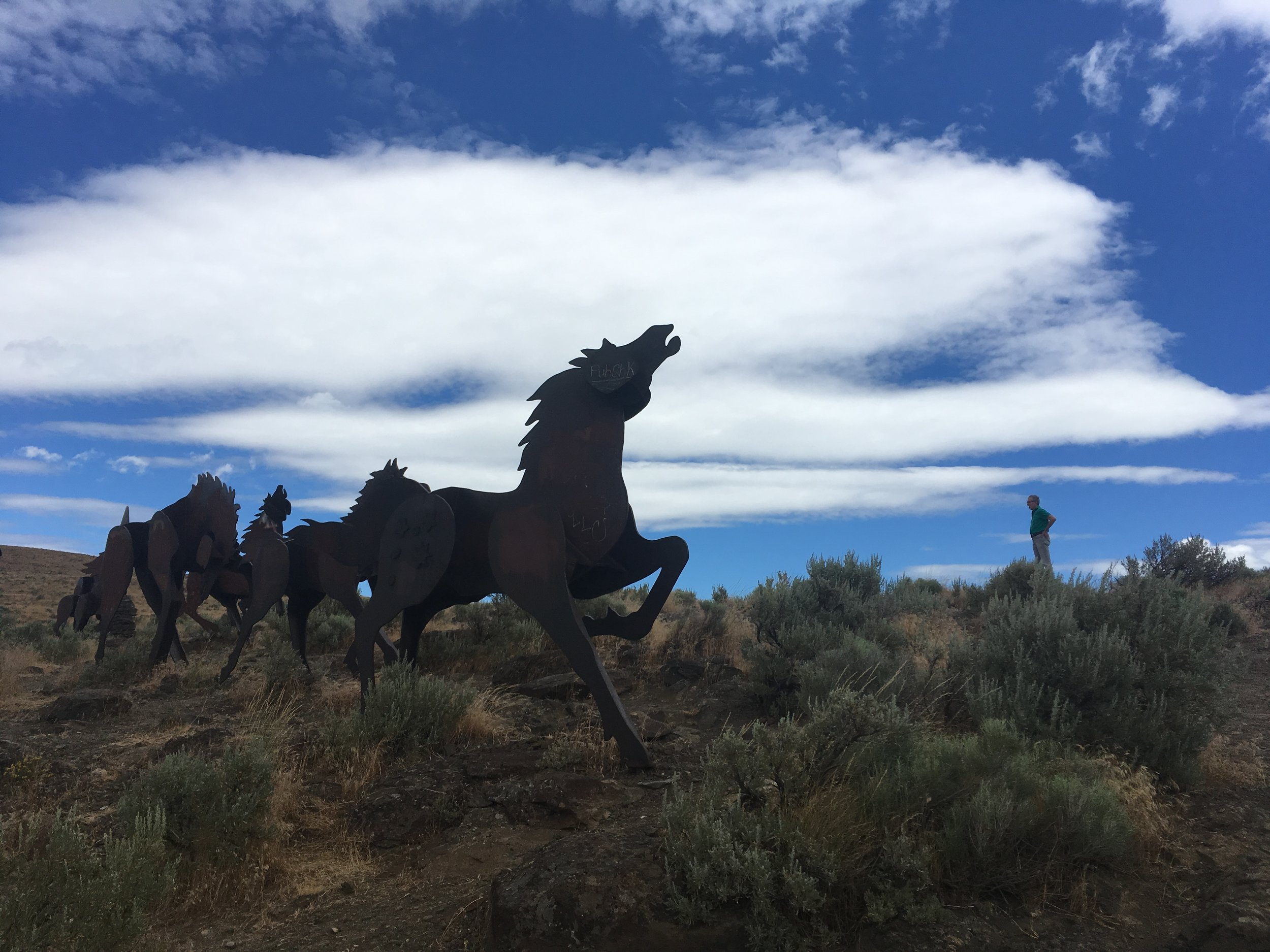 Wild Horses Monument. Columbia River, Washington.