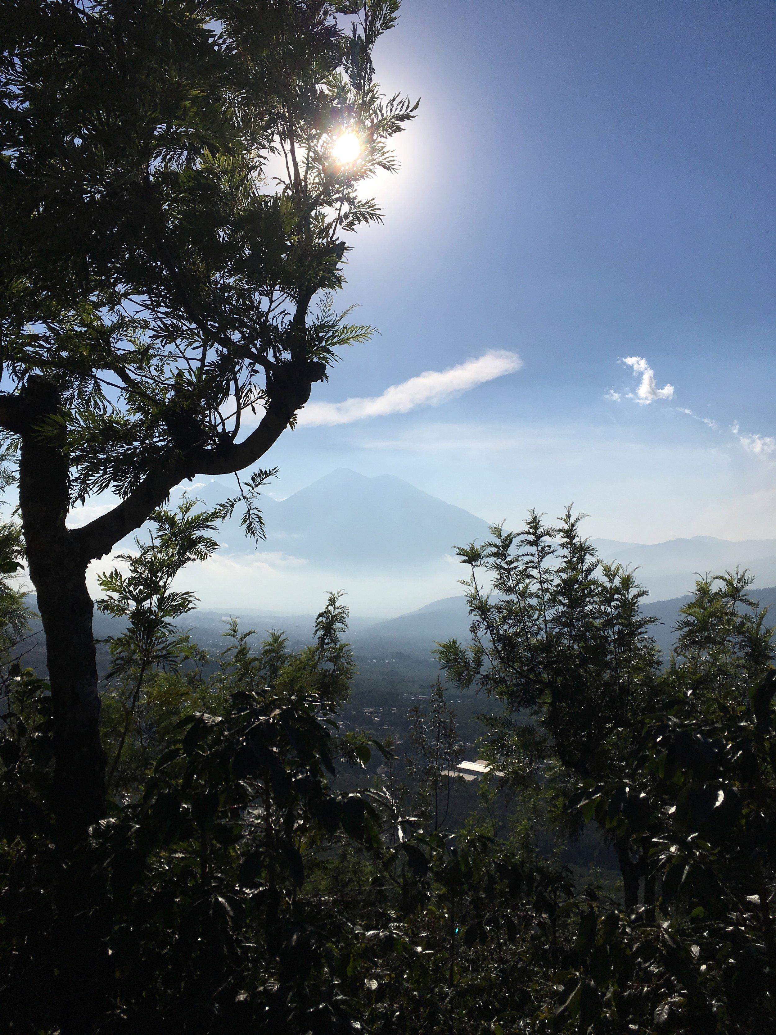 Acantenango and Volcán de Fuego from Finca Santa Clara.