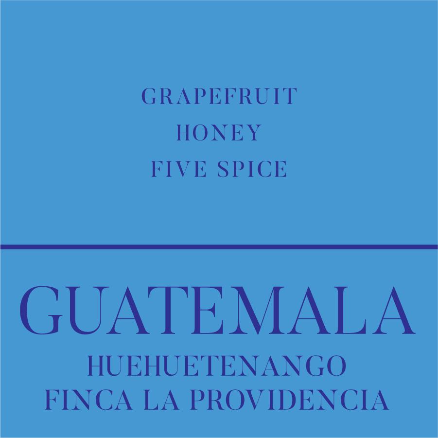 Foglifter Coffee Huehuetenango Finca La Providencia