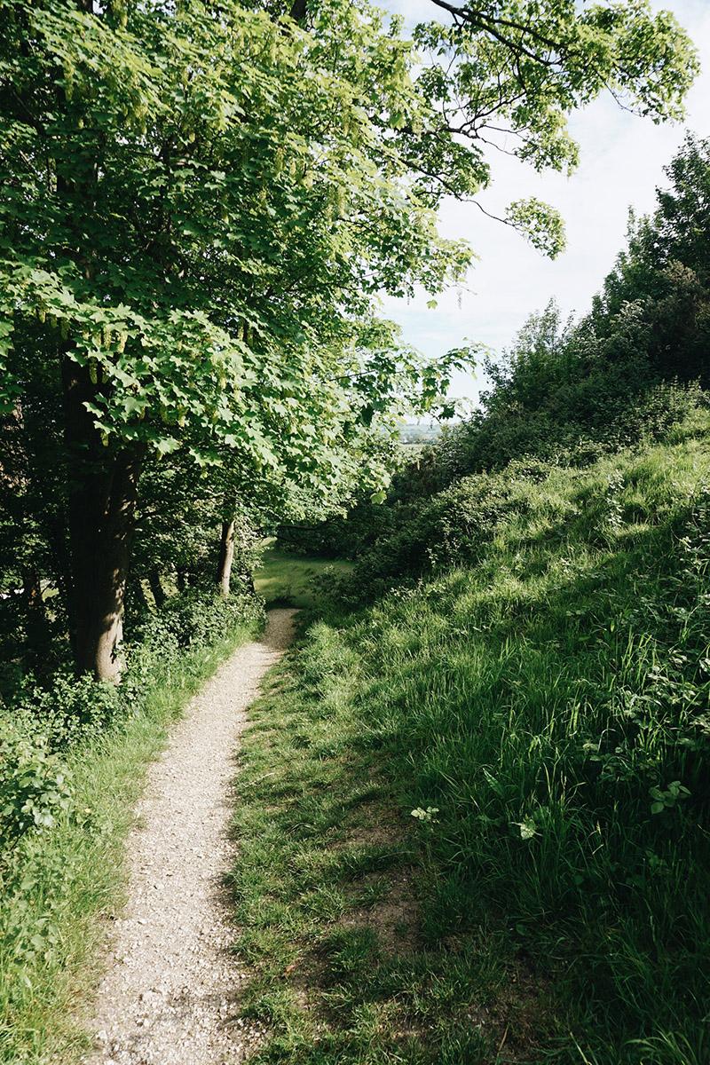 Theseptemberchronicles_dorset_path.jpg