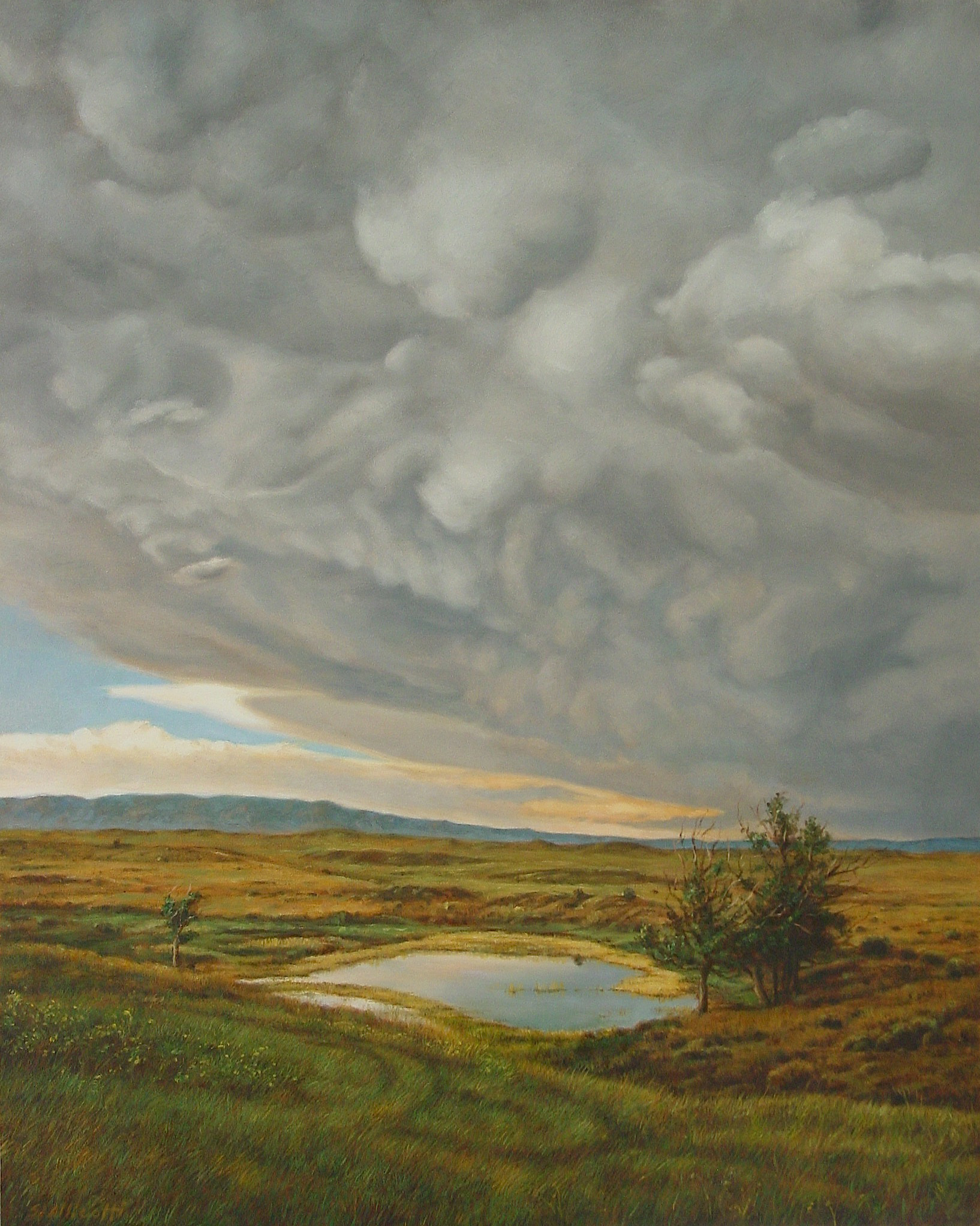 "SHARON ALLICOTTI  is an esteemed artist who lives and works in Los Angeles. After retiring from launching the Laguna College of Art & Design's MFA program, she works in her studio nonstop while also mentoring grad students to pass on the guardianship her teacher's passed on to her through carrying on the endless continuum of the contemporary canon of art.  Above: "" Pond, Wyoming Storm "" 20"" x 16"" Oil on Canvas  (Bees love the clover fields she captured in this landscape!)"