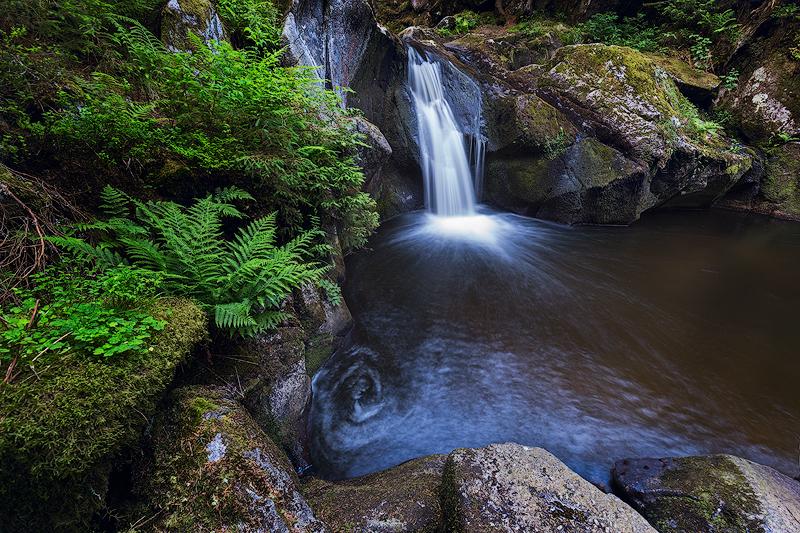 Polfilter um Reflektionen im Wasser und auf der Vegetation zu vermeiden. ND Filter um die Belichtungszeit zu verlängern und Bewegung ins Wasser zu bekommen
