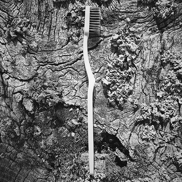Tooth enamel is the hardest tissue in human body. B A D N E W S : candies, soft drinks and even natural fruit juices high in sugar can demineralize enamel and cause it's destruction. G O O D N E W S : VIVI Charcoal Toothbrush bristles are so soft and elastic that they can reach the deep grooves and pits of enamel. B O N U S : activated charcoal balances pH in your mouth and reduces the growth of cavity forming bacteria.  #activatedcharcoal #whiteteeth #smiles #teethwhitening #whitesmile #natural