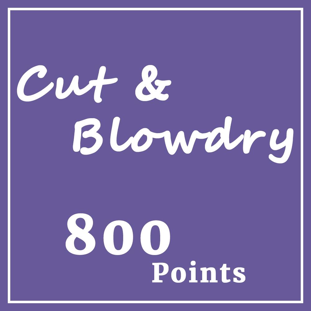 cut blowdry.jpg