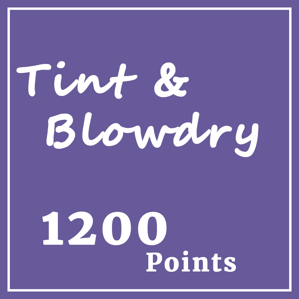 Tint & Blowdry.jpg
