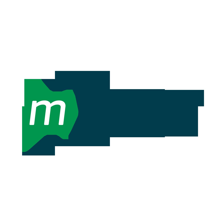 M-Flow-logo-2018.png