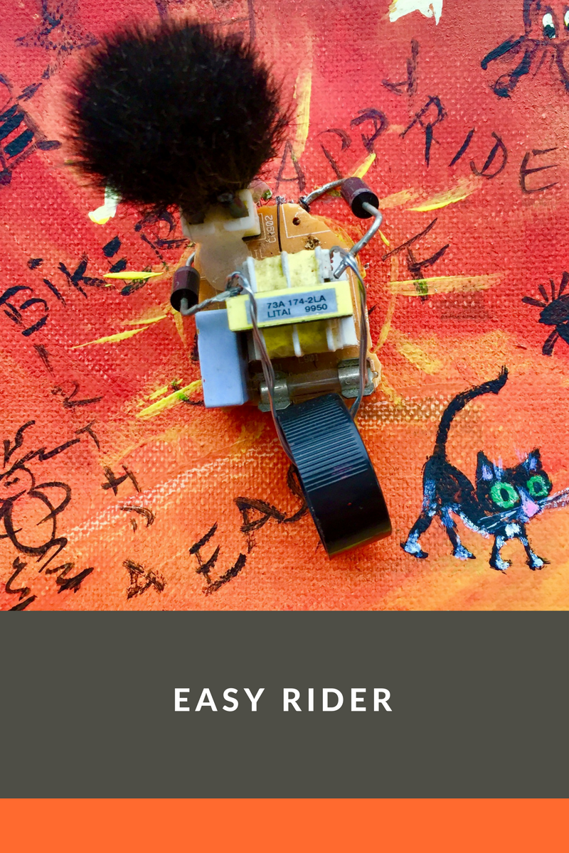 easy rider.png