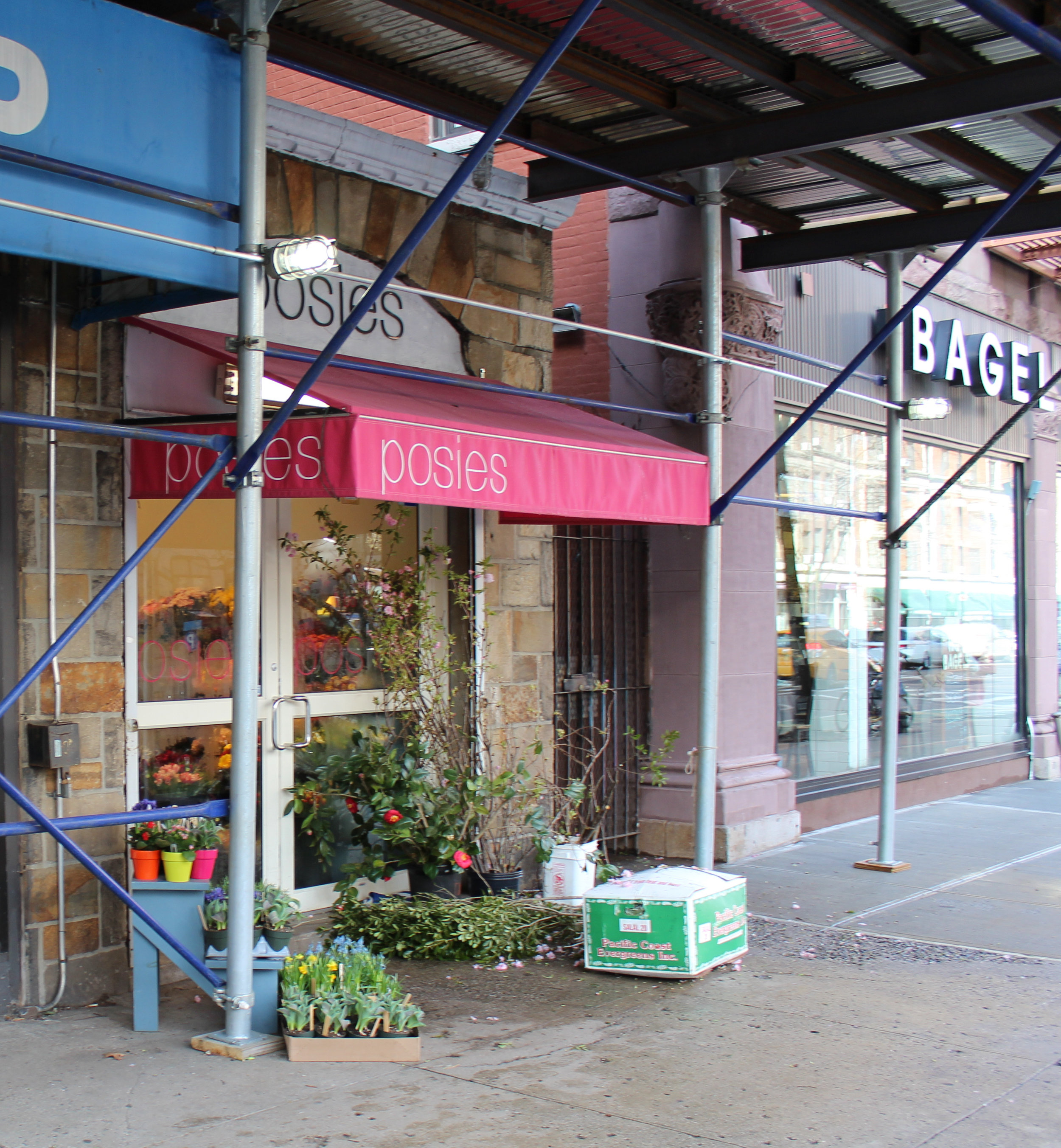 The stone work above the shop entrance helped me locate the spot of the former Roosters Flowers.