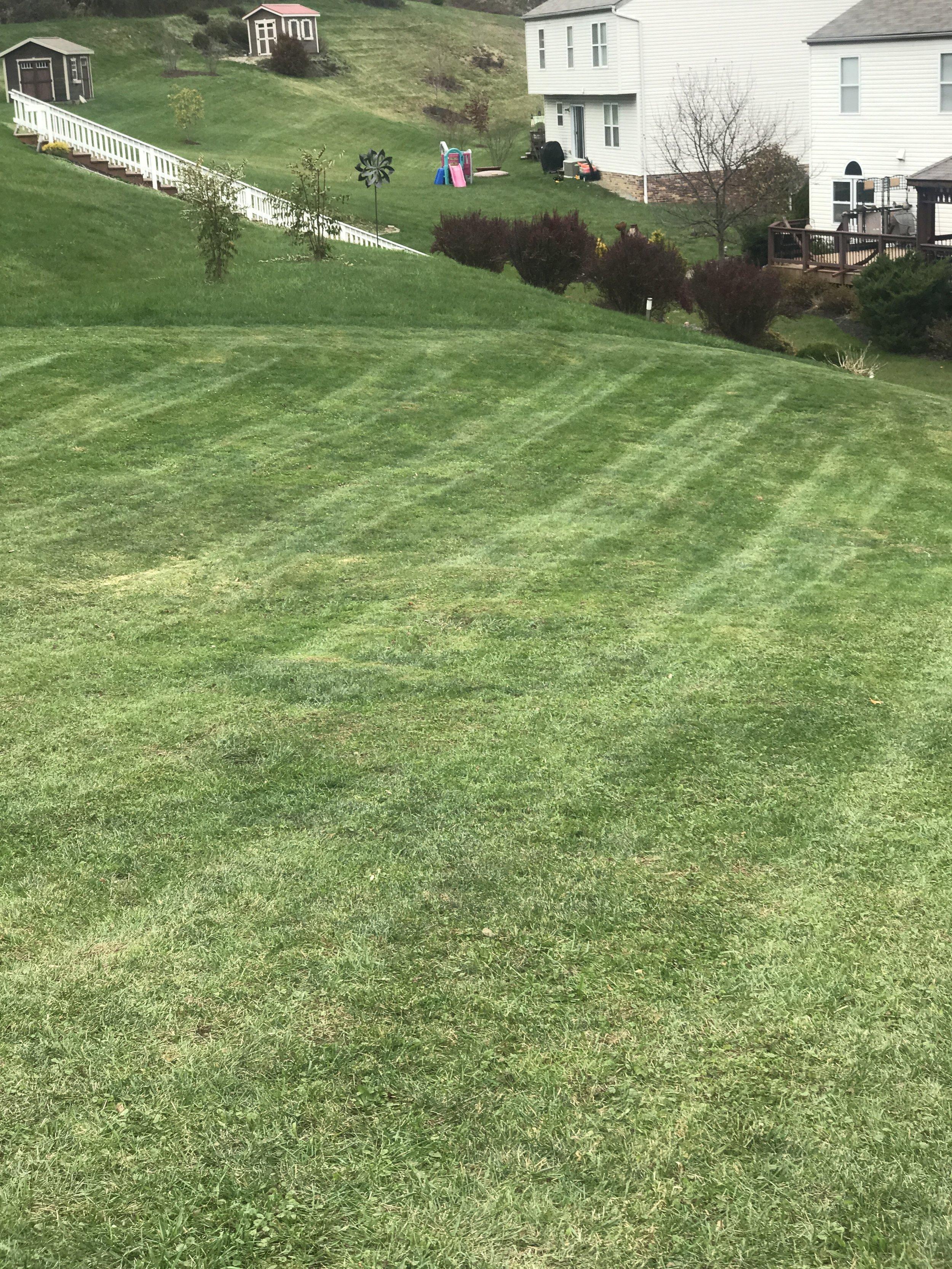 Lawn care .JPG