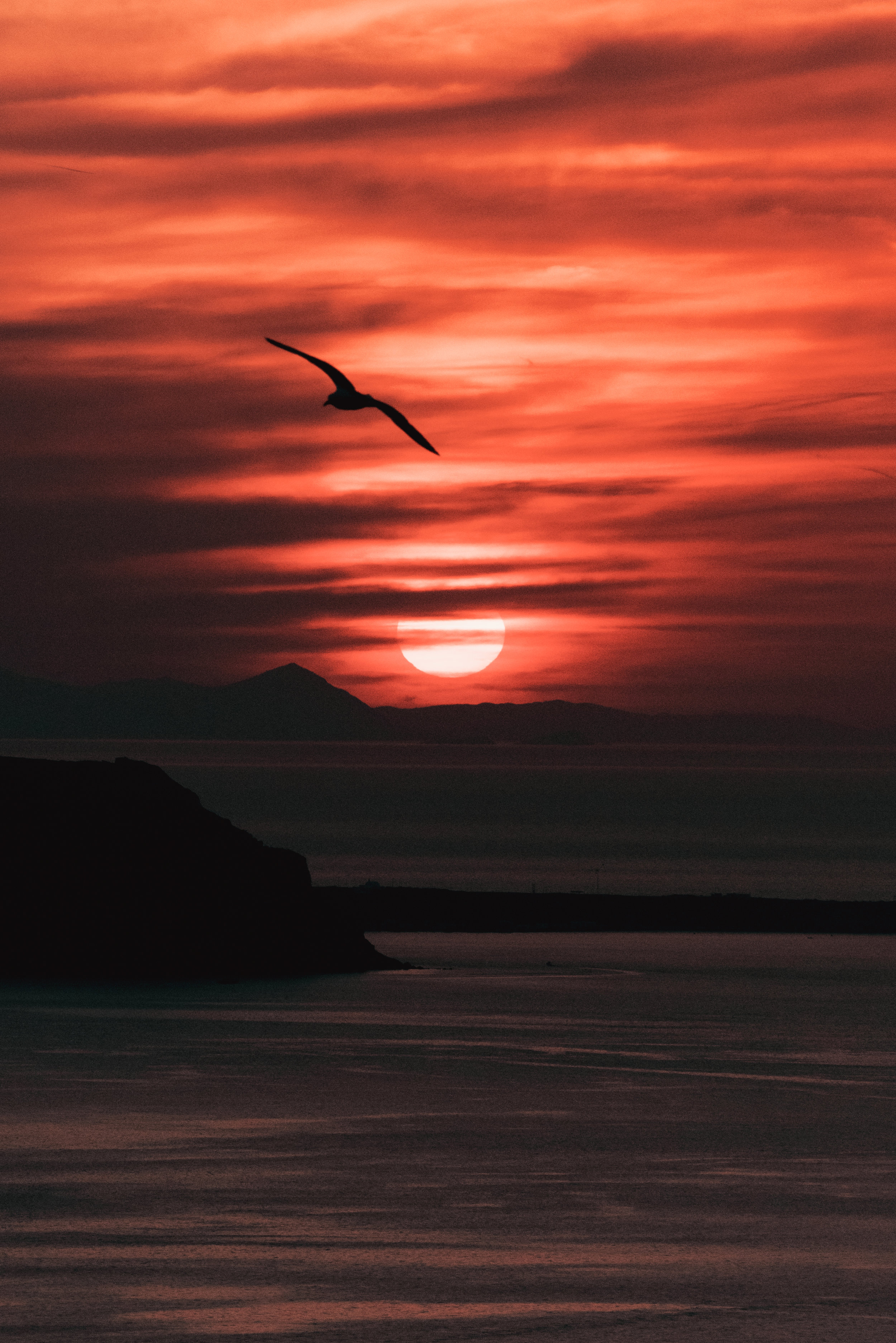 Santorini-02488.jpg