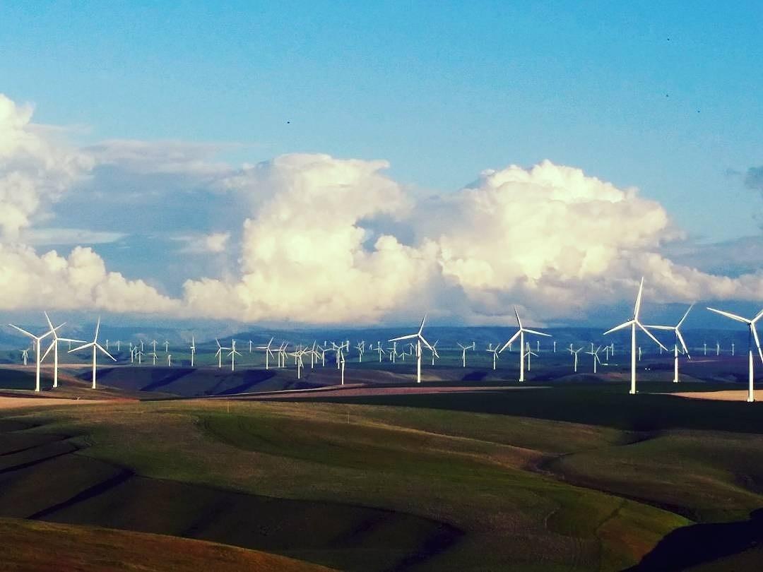 Wind Turbines  (1).jpg
