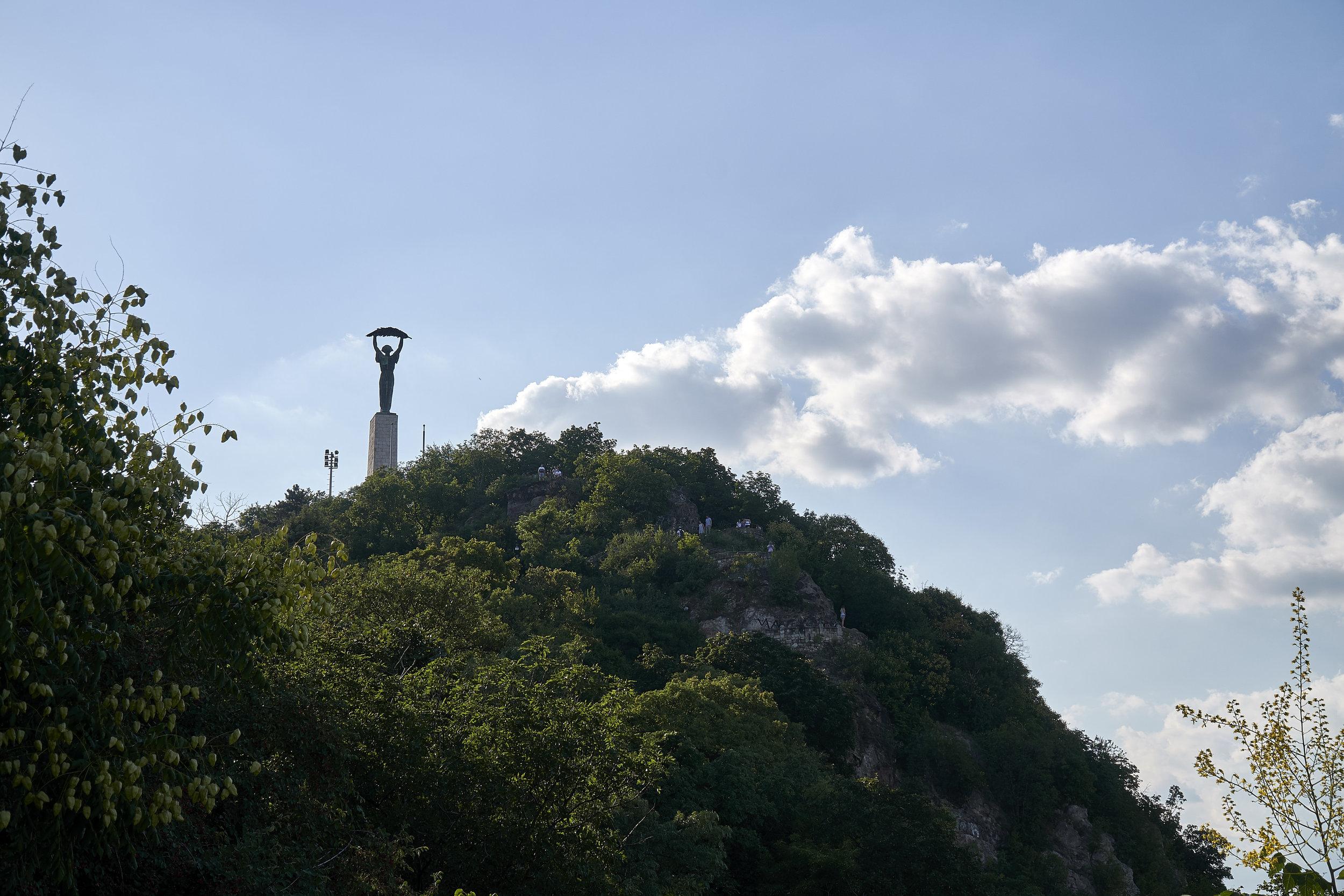 hill top.jpg
