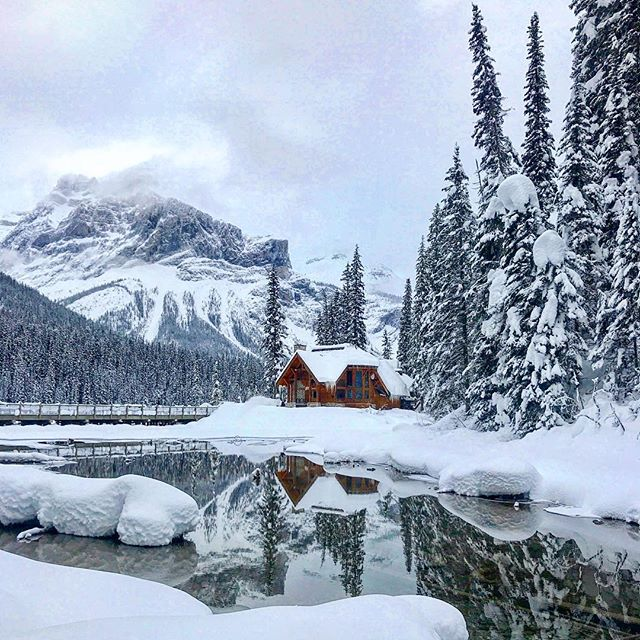 How do we live so close to Emerald Lake and not come here more often!?!? We are loving this winter wonderland ❤️. . . . #emeraldlake #emeraldlakelodge #yohonationalpark #yoho #fieldbc #goldenbc #cabinlife #mountaincabin #snowy #explorecanada #britishcolumbia #familyvacation #canadianrockies #mountains #reflection #winter #winterwonderland #travelcanada #canada❤️ #rockymountains #welovecanada #home #awayontheroad
