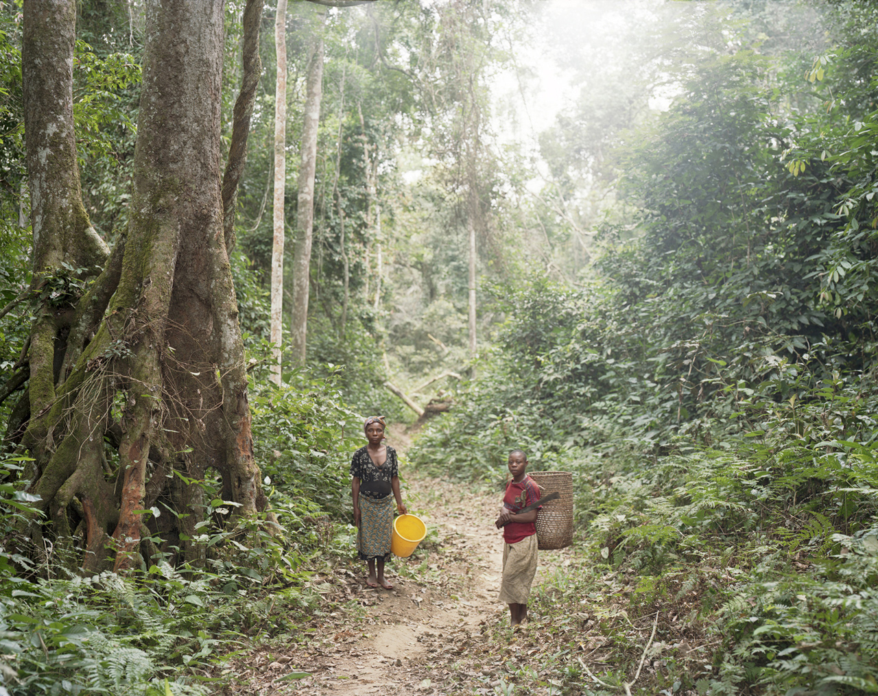 """Pygmy women on the way to fish in the river, Northern Gabon"" Archival Pigment Print"