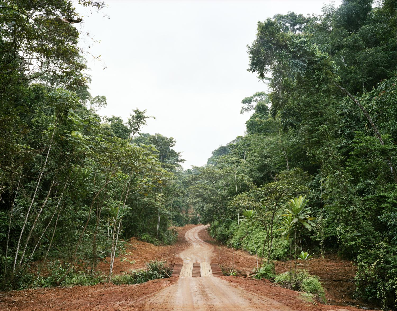 """""""Logging road with bridge"""" Archival Pigment Print"""