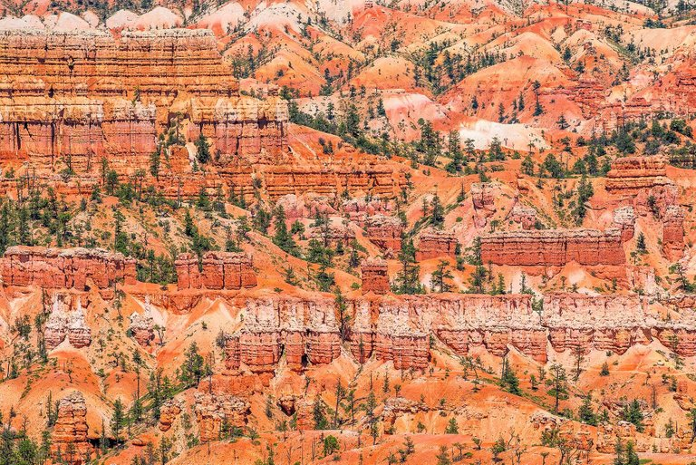 """ZOE WETHERALL, """"BRYCE CANYON"""" archival pigment print (limited edition)"""