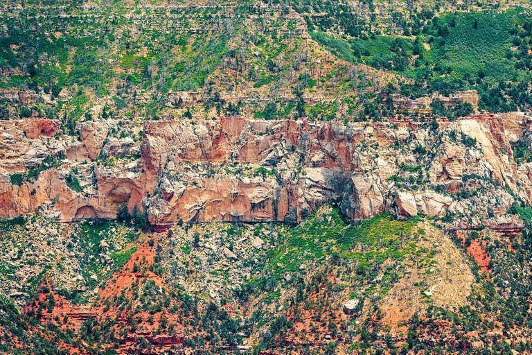 "ZOE WETHERALL, ""GRAND CANYON"" archival pigment print (limited edition)"