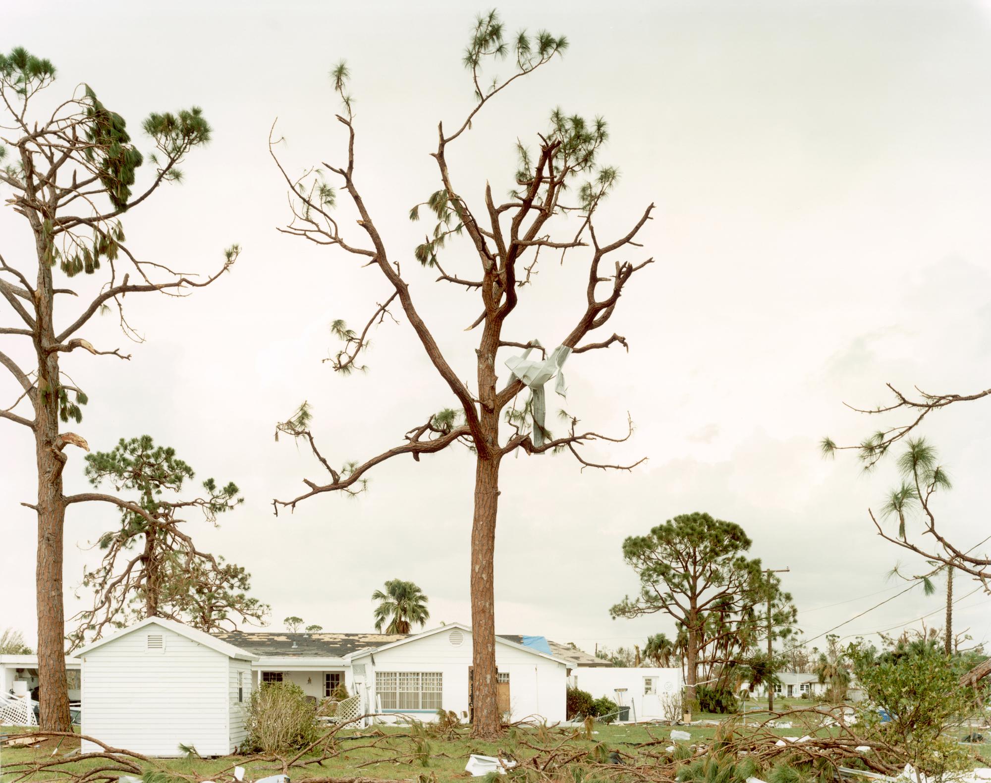 Sasha Bezzubov, Hurricane #4, Florida, 2004