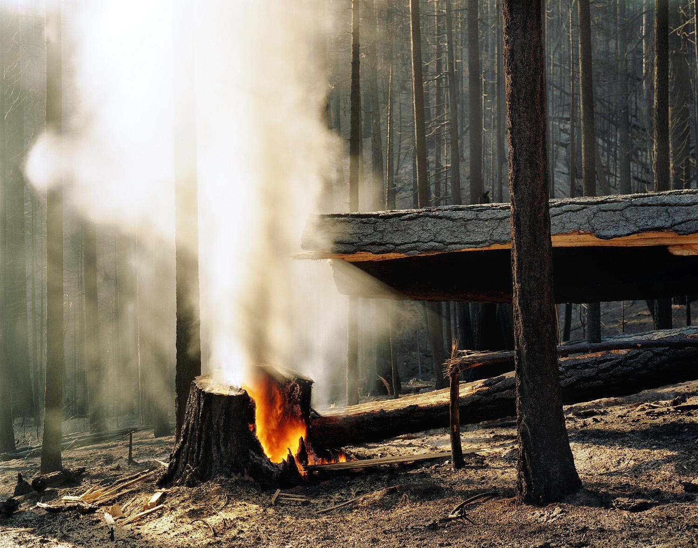 Wildfire #22 Moonlight Fire, Plumas National Forest, CA,2007