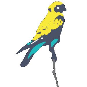 Favi 1 Bird.png