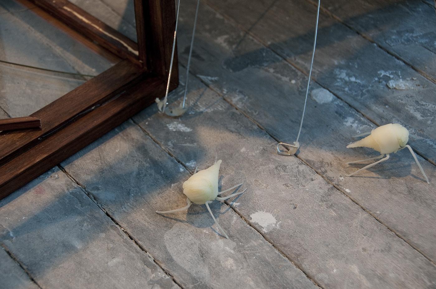 6-cicada-detail.jpg