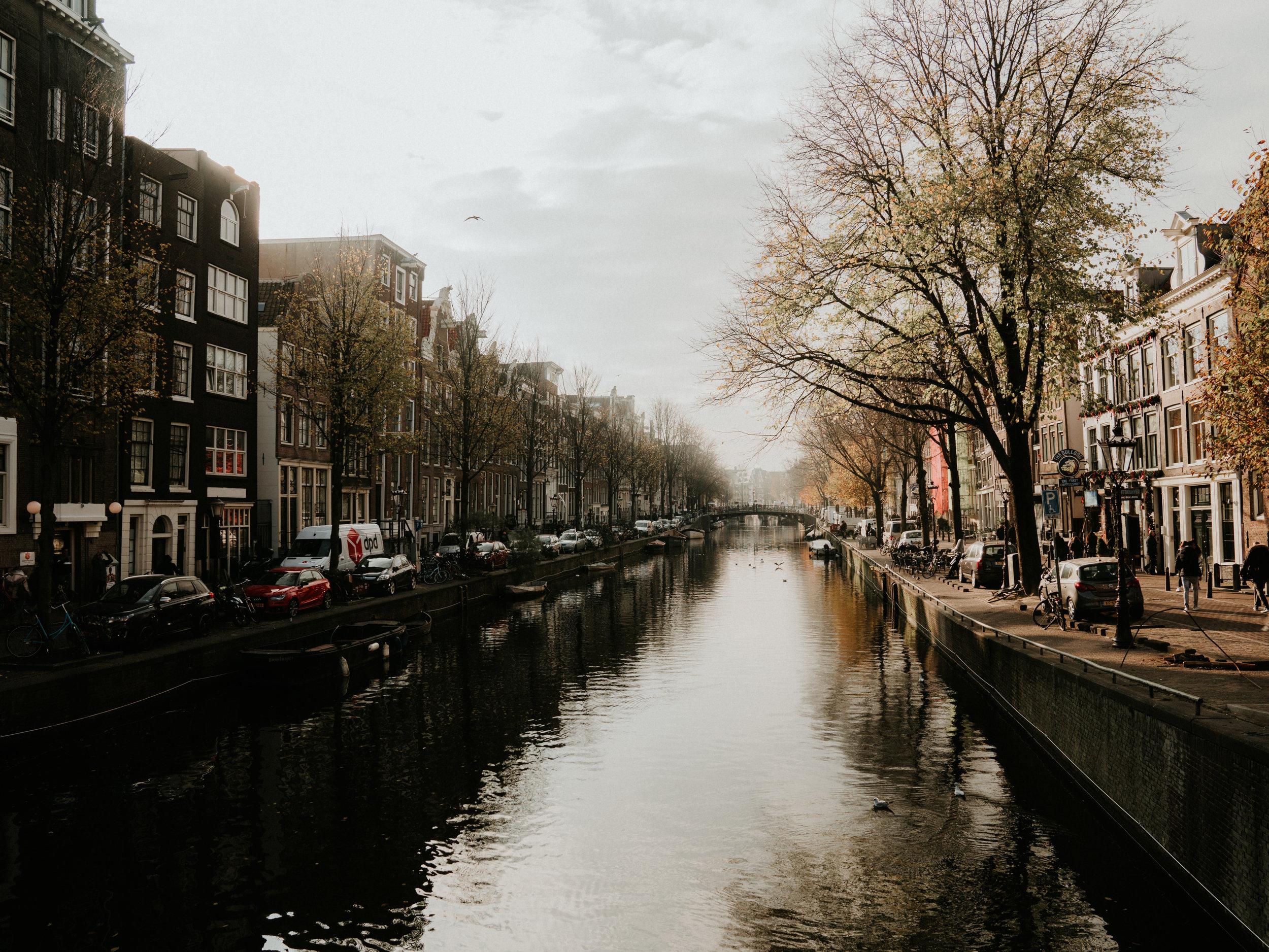 amsterdam (1 of 1).jpg