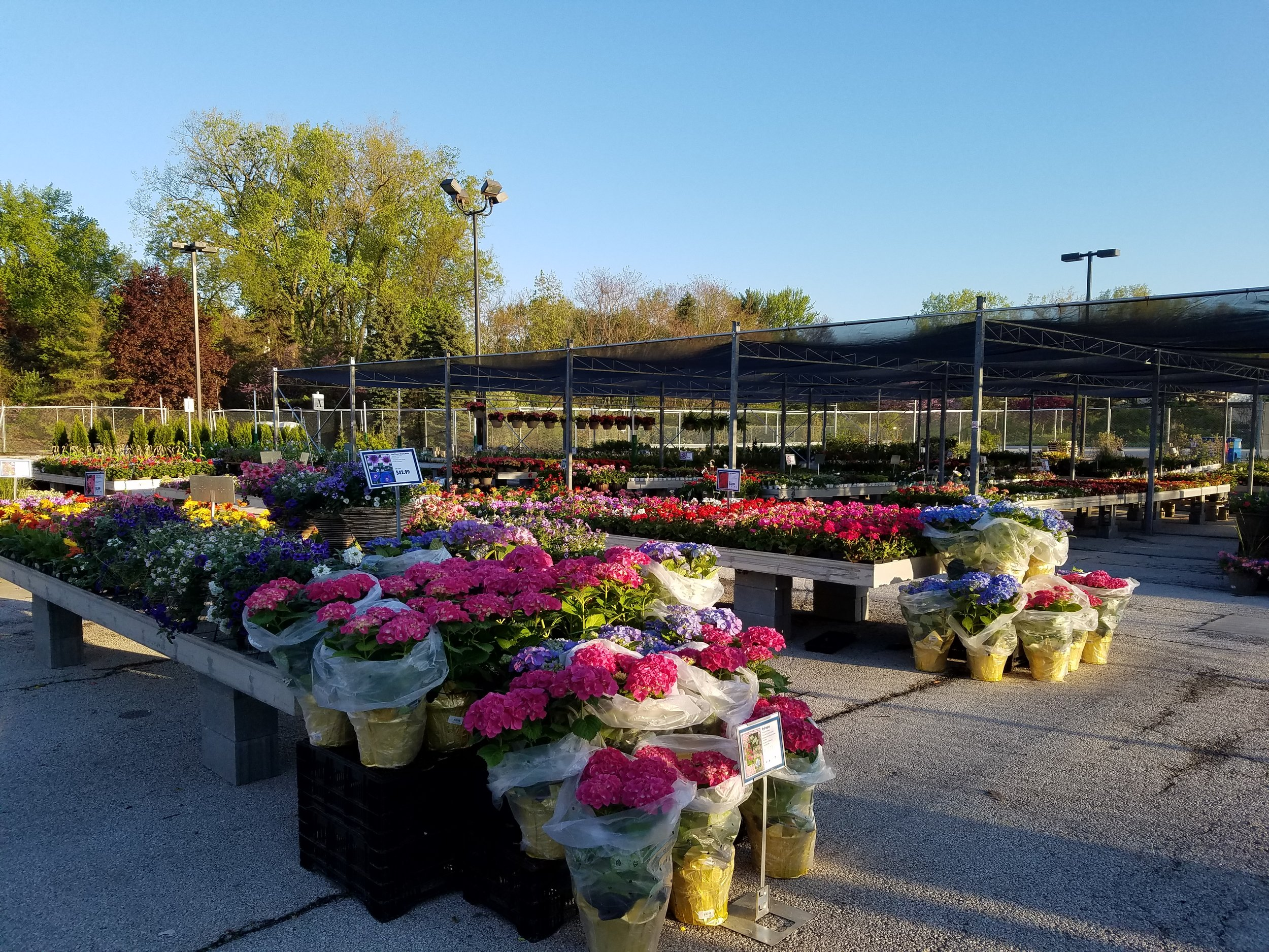 OPEN DAILY - Flower Market Hours:MON. - FRI. 10AM - 5PMSAT. - SUN. 10AM - 4PMPhone Number:(419) 922 - 9272Address:4701 Talmadge RoadToledo, OH 43623(We are located in the former Anderson's Toledo Garden Center)