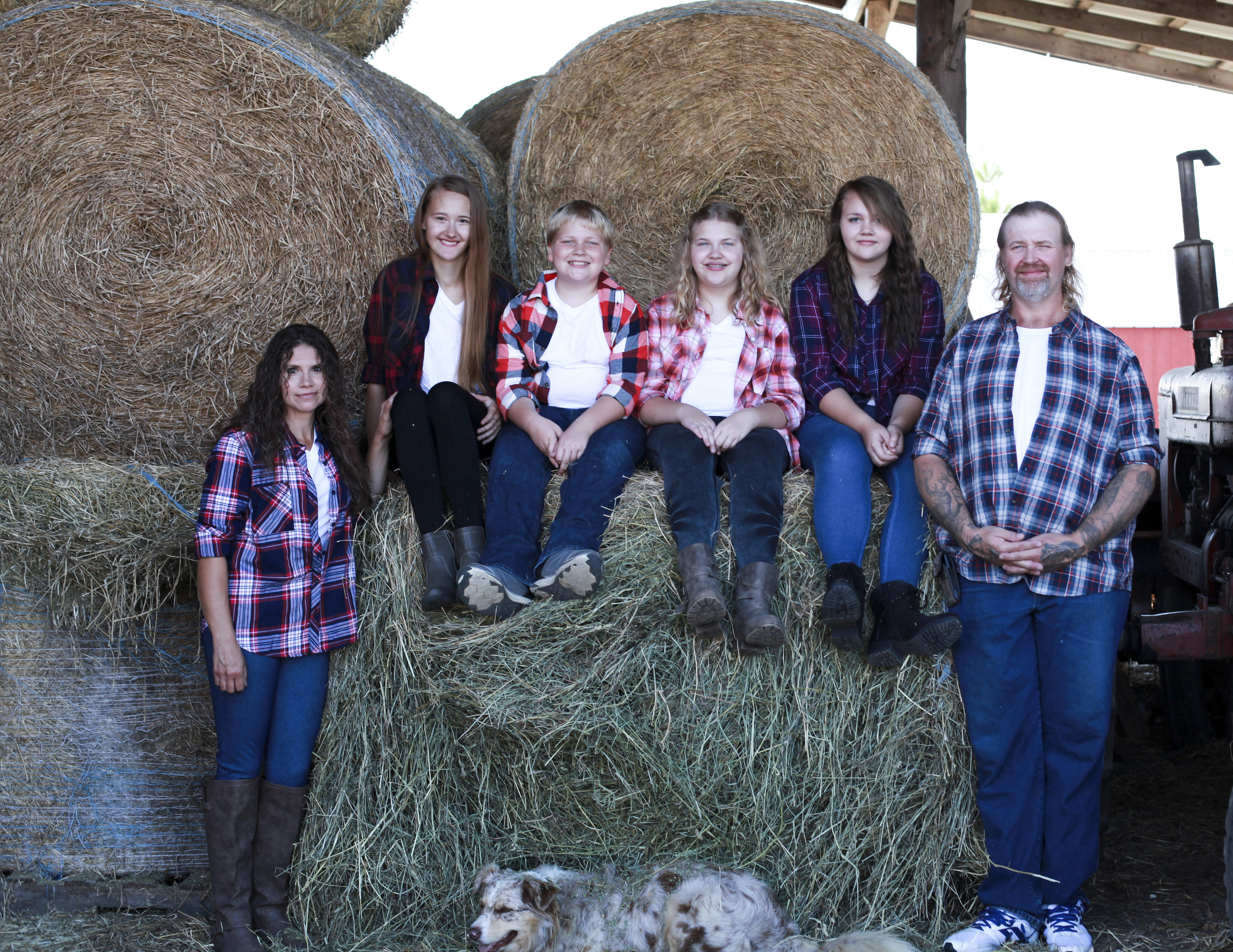 all of us by hay.jpg