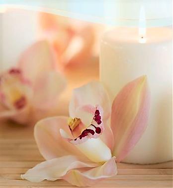 Get Massage from our certified and professional massage therapist  Leonard Lisowski LMT (MA 8186)  Jessica Pomales LMT (MA 64386)  Brookshire Rheumatology & Wellness Center  Massage Lic # MM 36017