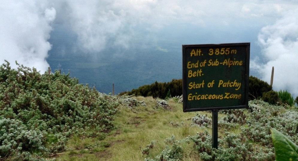 Mount_Muhabura