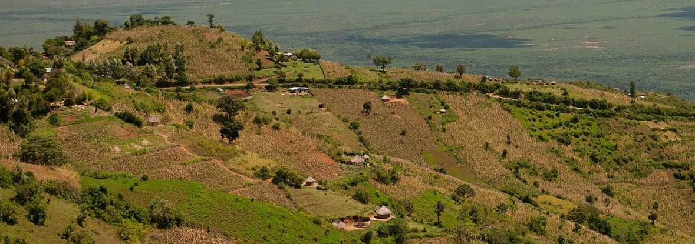 Mount_Elgon_Hiking_Trail