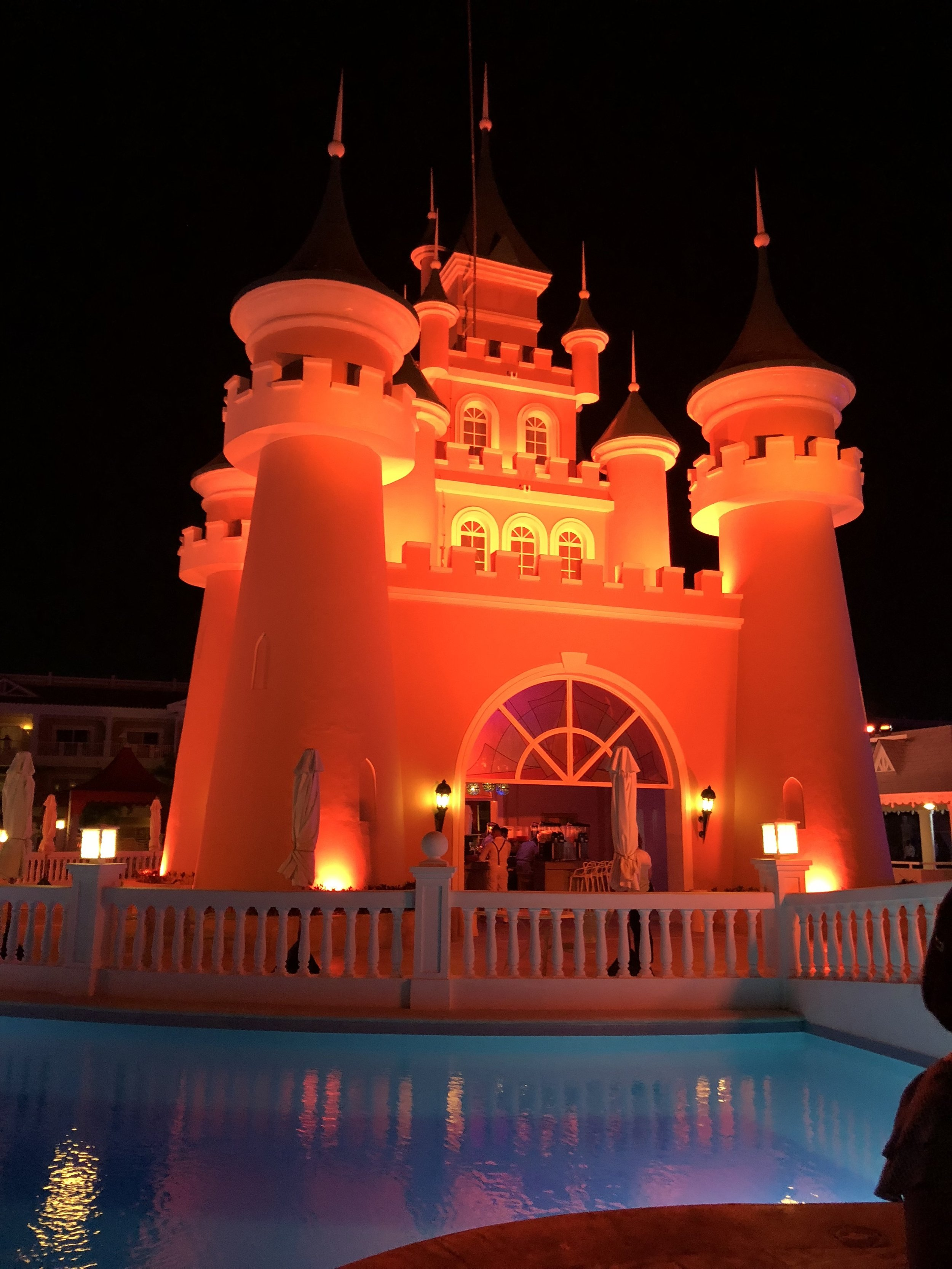 A close up of the castle at night.