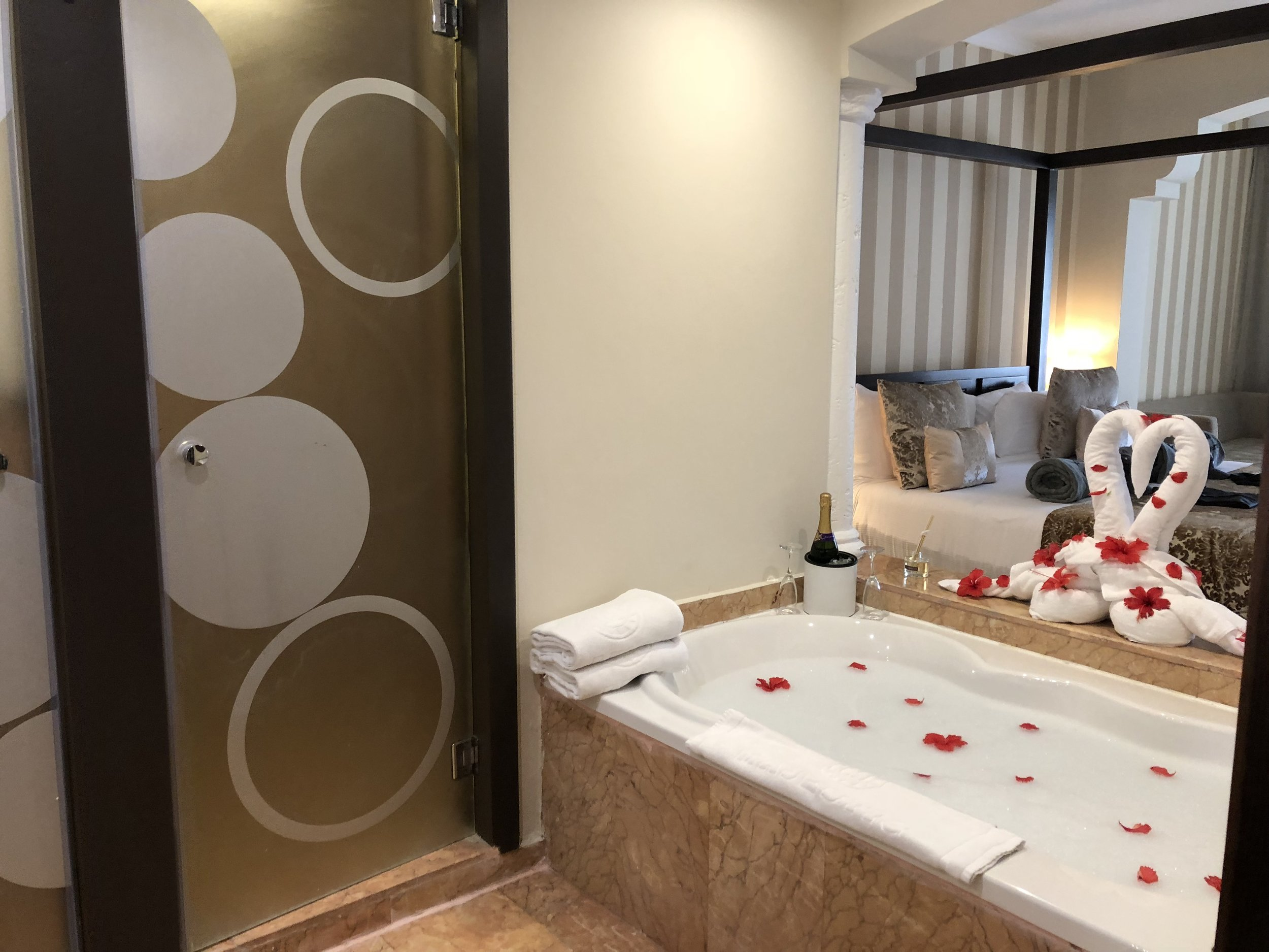Room Type: Jr. Suite with Jacuzzi  Open concept for your bathroom and jacuzzi tub.