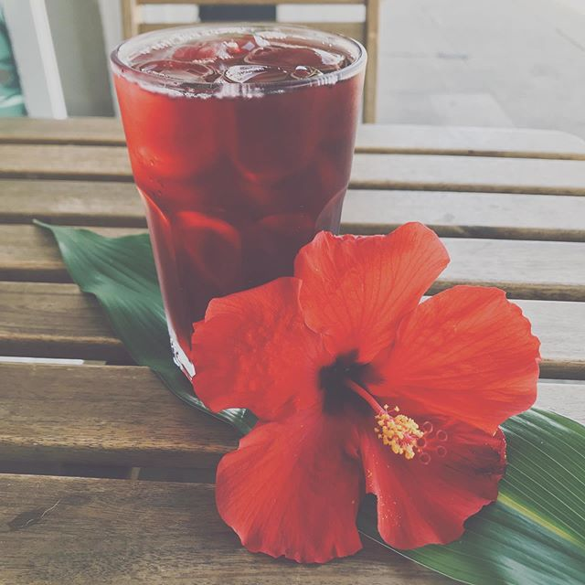 🌺Our new end of summer showstopper, Hibiscus Iced Tea 🌺 . . . . . . . Photo cred 📷 @michaelhjlee  #icedtea #hibiscus #tea #coffeeshop #cutecoffeeshop #coffee