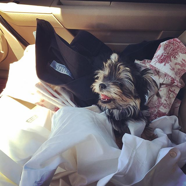 Helping Dad take his clothes to the dry cleaner
