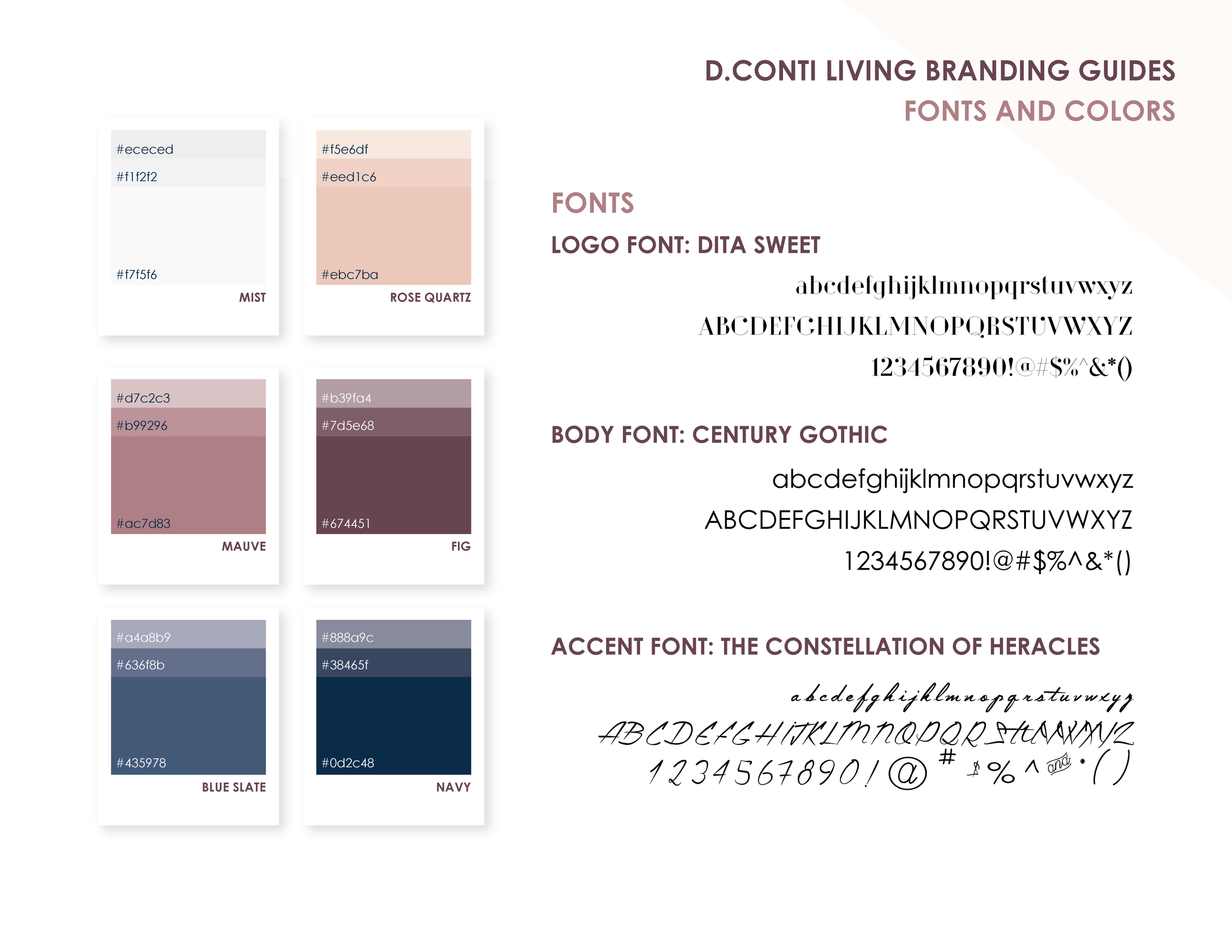 D Conti Living_Brand Guides-04.png