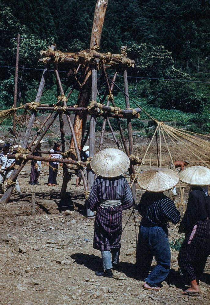 112 Large Group of Women Setting Tall Pole